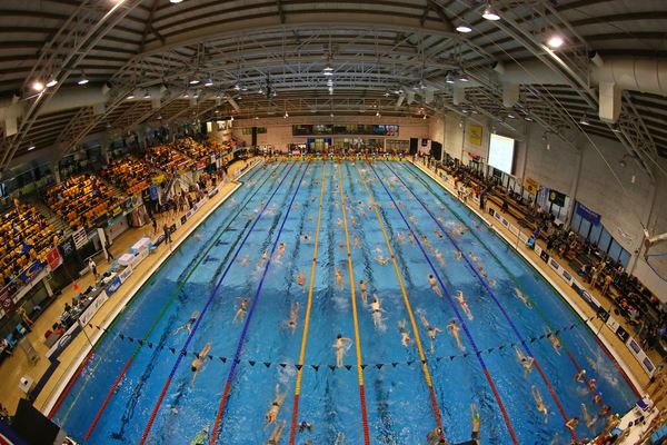 Six SNM swimmers win gold at Nationals